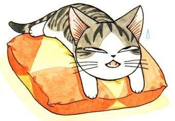 Chi, une vie de chat!